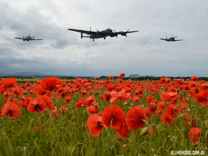 ANZAC day service with aircrafts and poppies