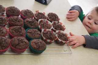 double chocolate chip muffins recipe