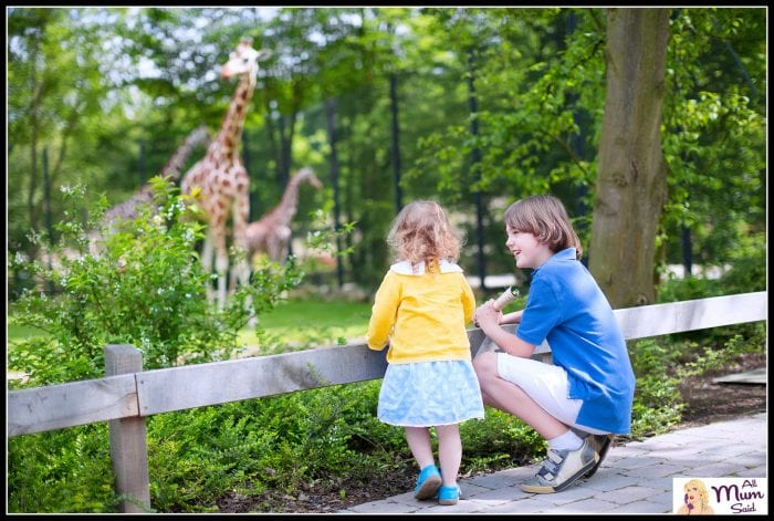 Hunter Valley zoos | Hunter Valley for kids