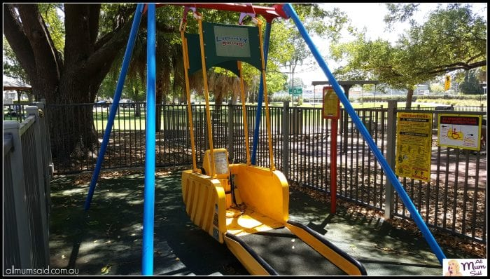 Maitland Park Libery swing special needs